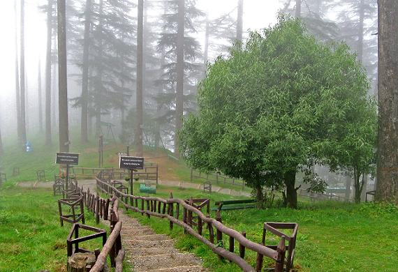 eco park in dhanaulti
