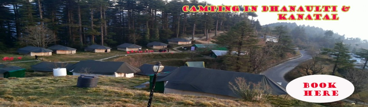 dhanaulti camp packages